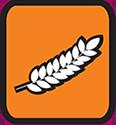 ambree-douce